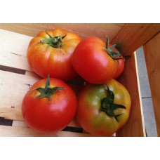Tomate rouge 1 kg